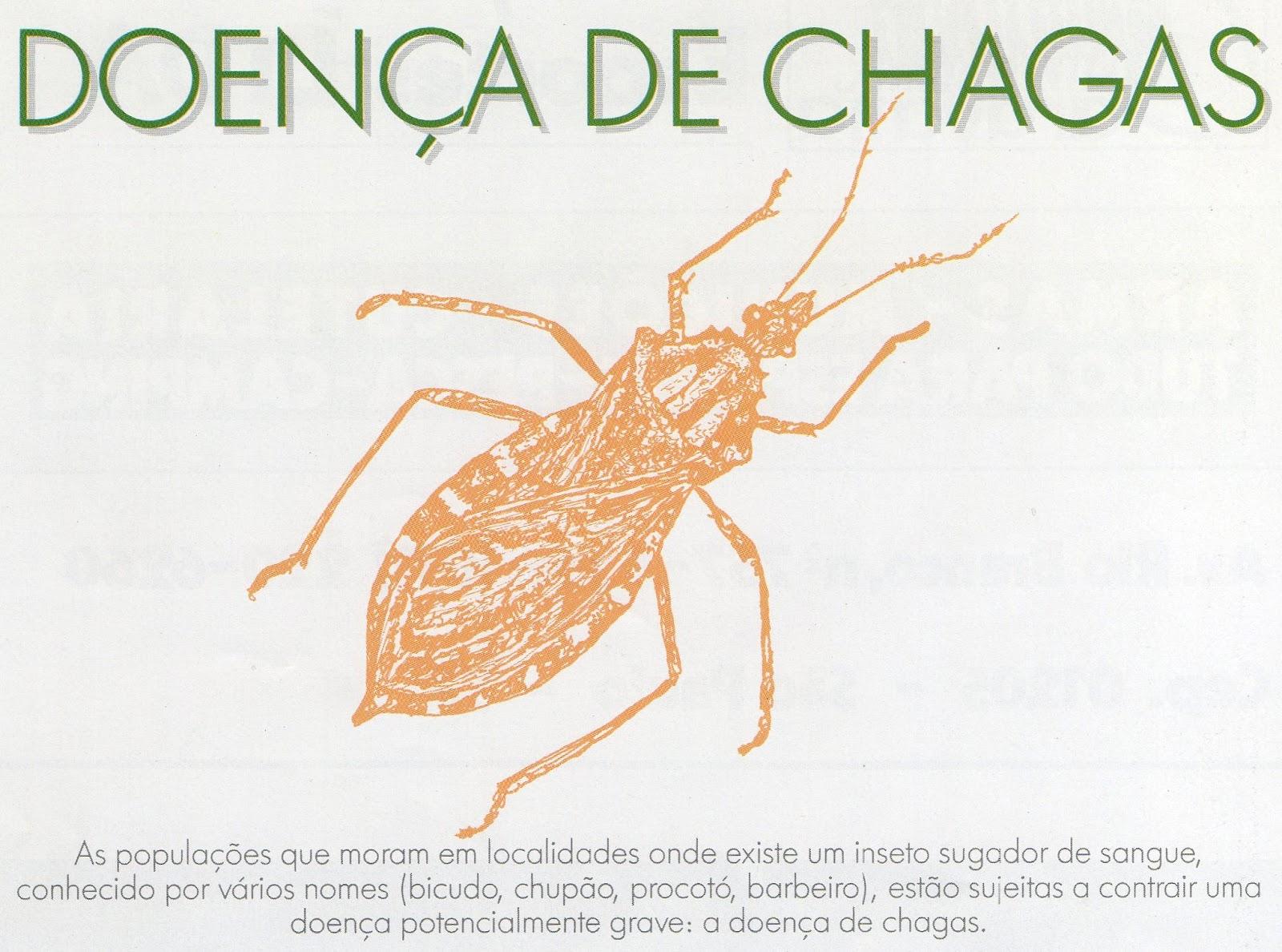 Doença de Chagas: saiba mais