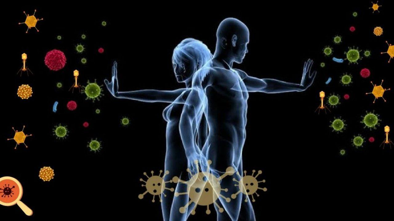 Sistema imunológico: Como ele funciona? | Dra. Keilla Freitas