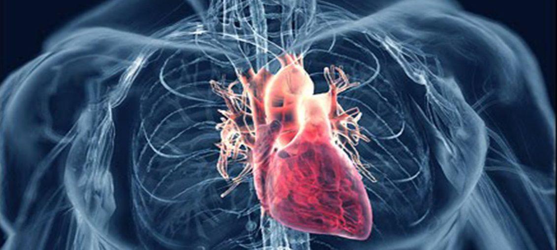 infecções que prejudicam coração e cérebro