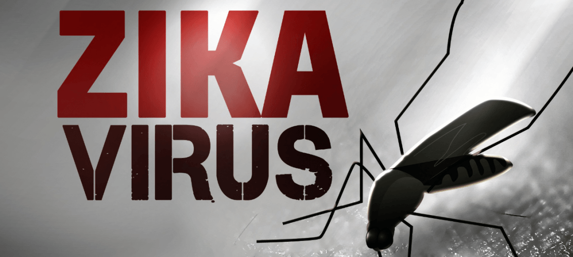 virus zika - Infectologista SP