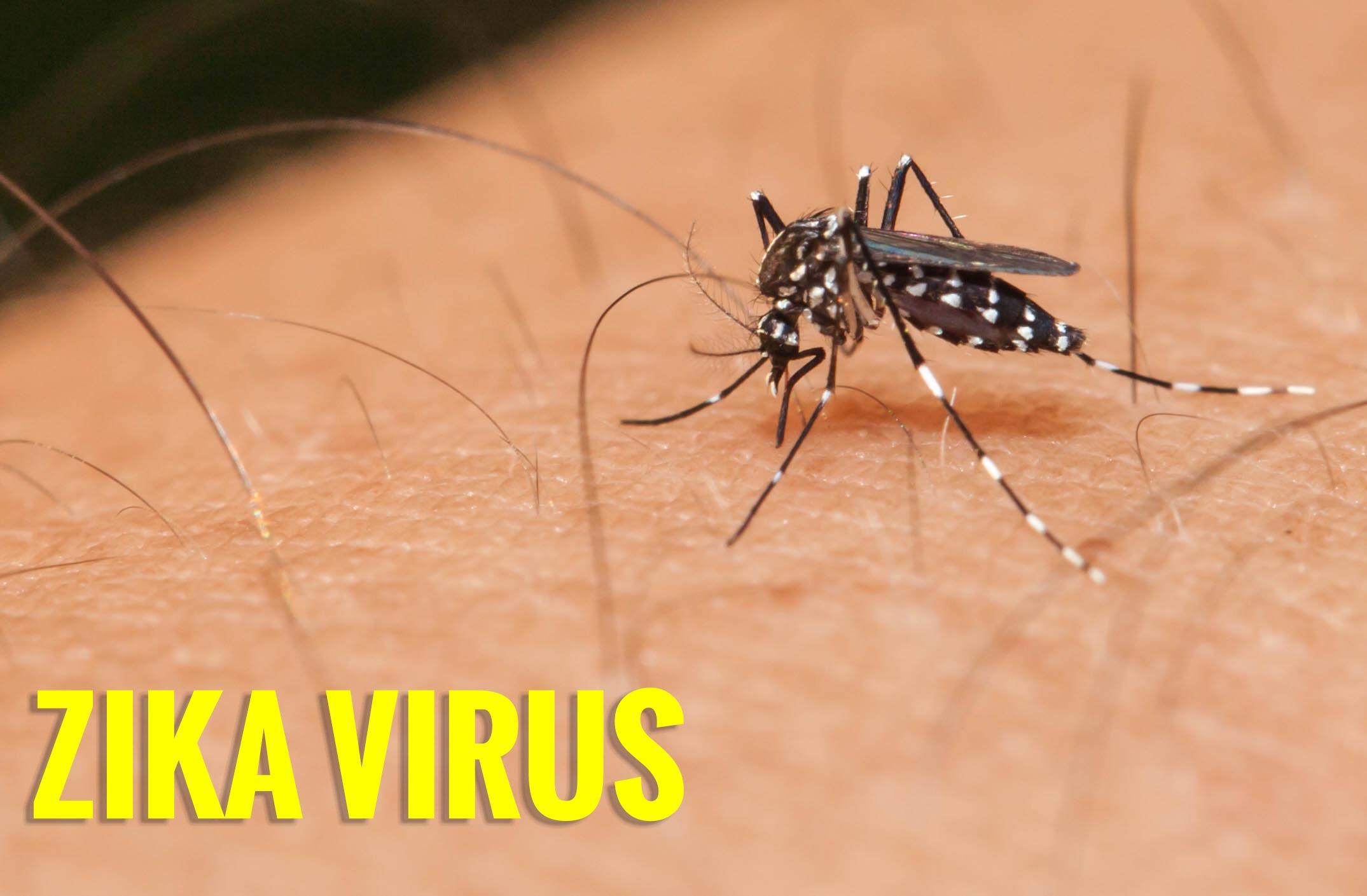 Zika: pessoa saudável pode transmitir o vírus