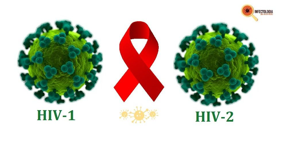 Tipos de HIV - Infectologista SP