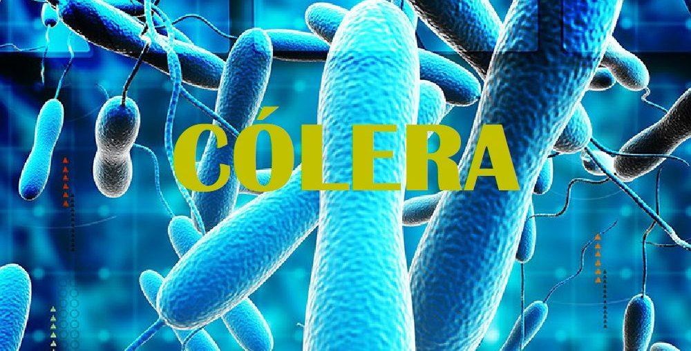 Infectologista - Cólera: Saiba mais