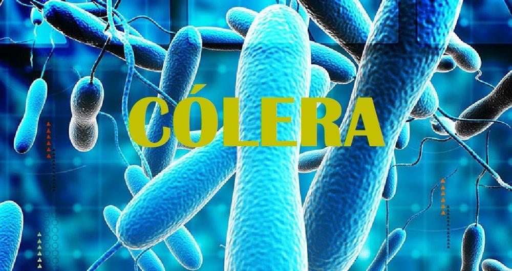Cólera: Saiba mais