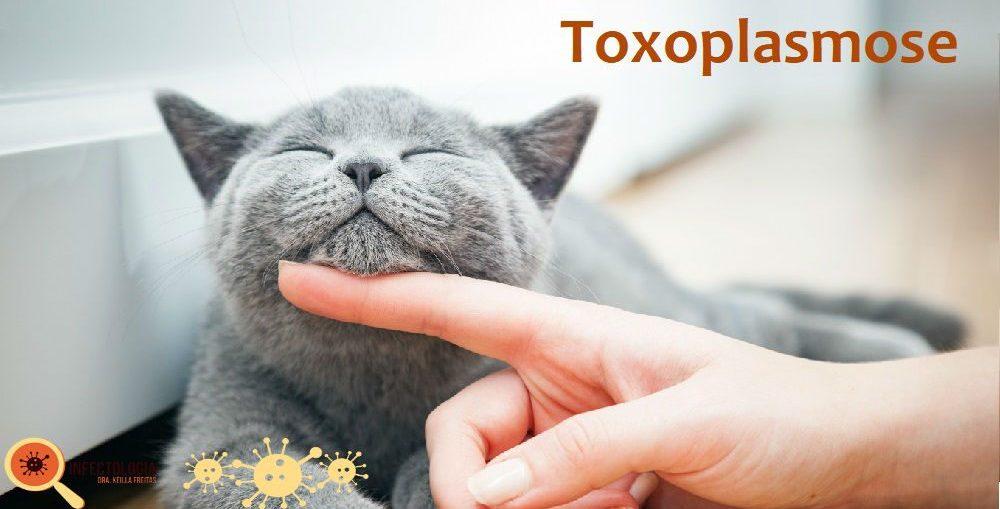 Infectologista - Toxoplasmose: saiba mais