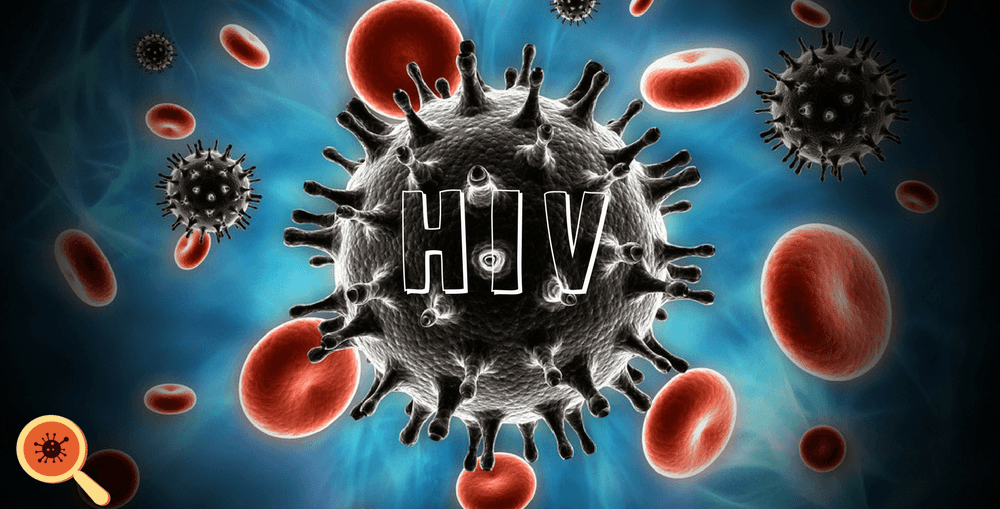 Infectologista - Como o vírus HIV age no organismo humano