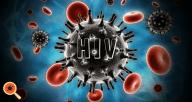 Como o vírus HIV age no organismo humano