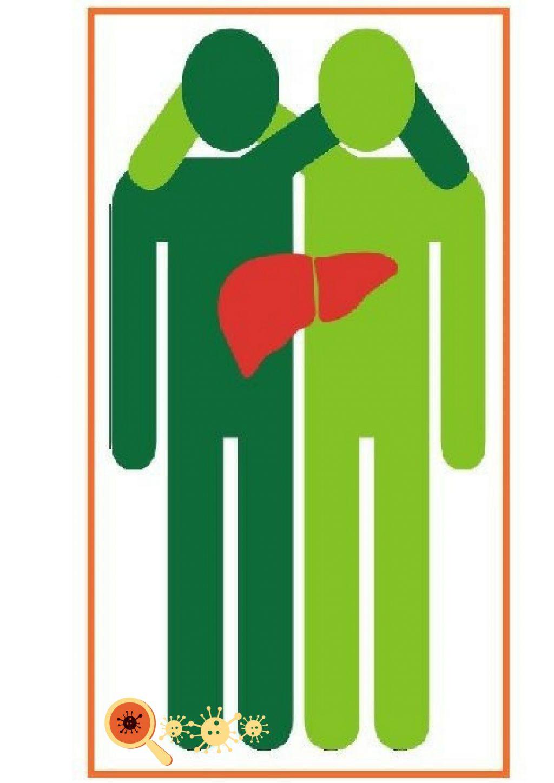 Cirrose hepática: conheça