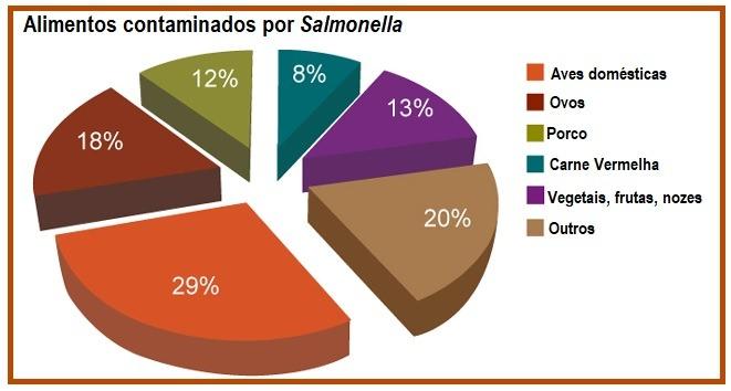 Salmonella Alimentos Contaminados